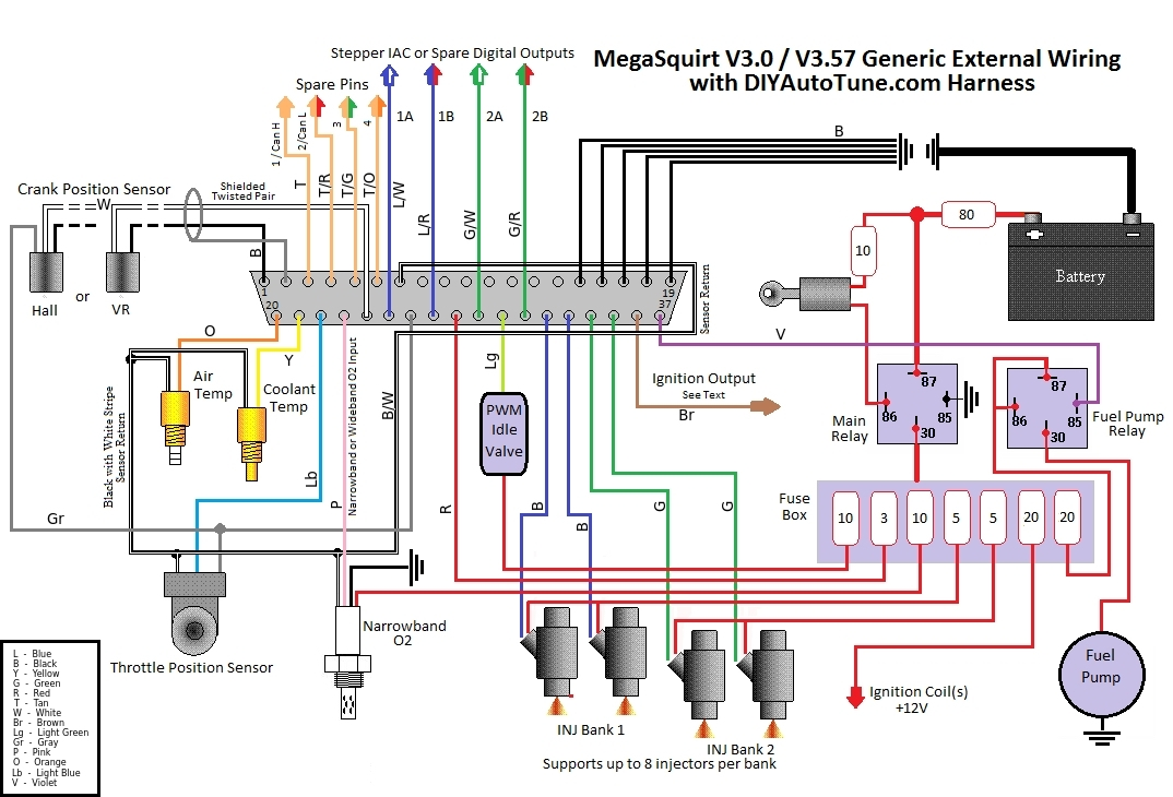 10' Megasquirt Electronic Fuel Injection Wiring Harness (Ms1 / Ms2 inside Megasquirt Wiring Diagram