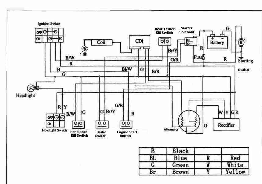 Falcon 4 Wheeler Wiring Diagram also Yamaha info moreover Yamaha Aerox Wiring Diagram together with Tao 50cc Scooter Wiring Diagram in addition Wiring Diagrams For 150cc Chinese Go Kart. on kazuma 50cc atv wiring diagram