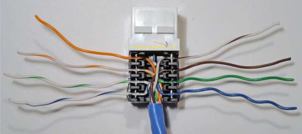 Cat 5 Wiring Diagram Wall Jack Fuse Box And Wiring Diagram