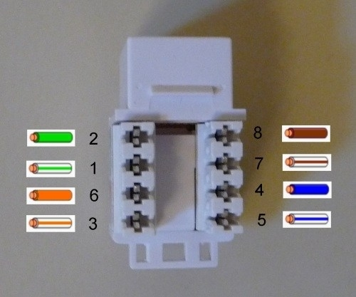 Cat 6 Wiring Diagram For Wall Plates inside Cat 6 Wiring Diagram