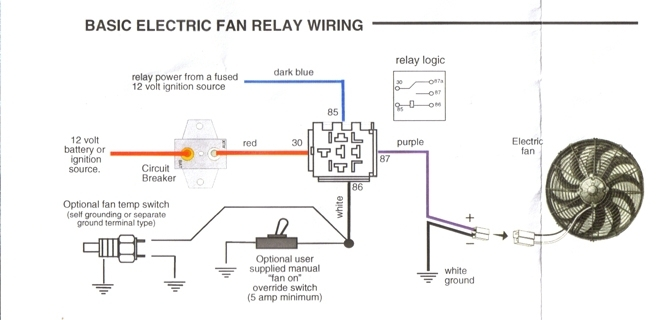 Dual Electric Fan Wiring Diagram How To Wire Electric Fan Wiring regarding Electric Fan Wiring Diagram
