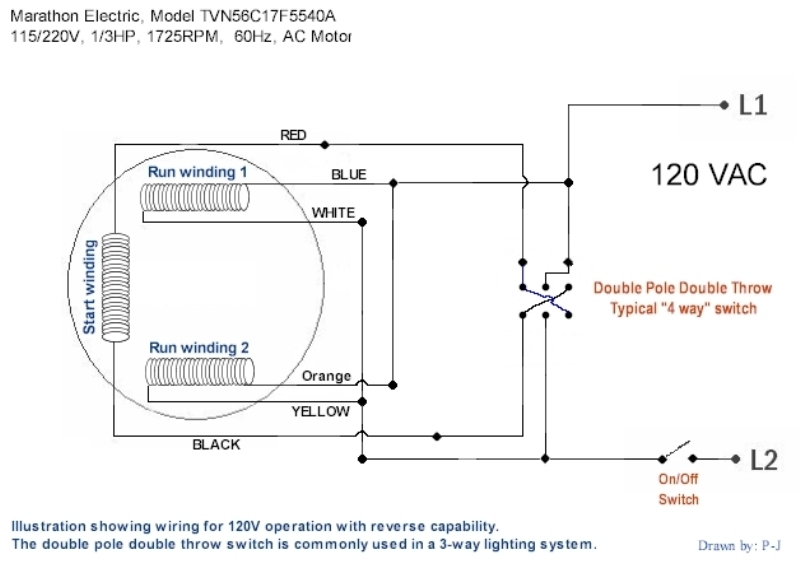 Single Electric Fan Wiring Diagram : Marathon electric motor wiring diagram fuse box and