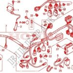 Wire Harness - Fourtrax 420 Rancher 2X4 Electric Shift Trx420Te7 pertaining to 2007 Honda Rancher 420 Wiring Harness Diagram